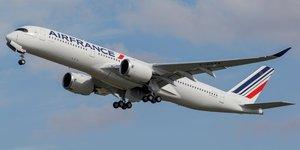 Air france realise un premier vol long-courrier avec du biocarburant