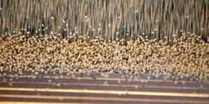 L'ue prend acte des imports de soja americain avant de negocier