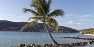Une plage paradisiaque sur lîle de la Martinique, en mars 2013