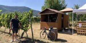 Vignoble Alsace bar à vins